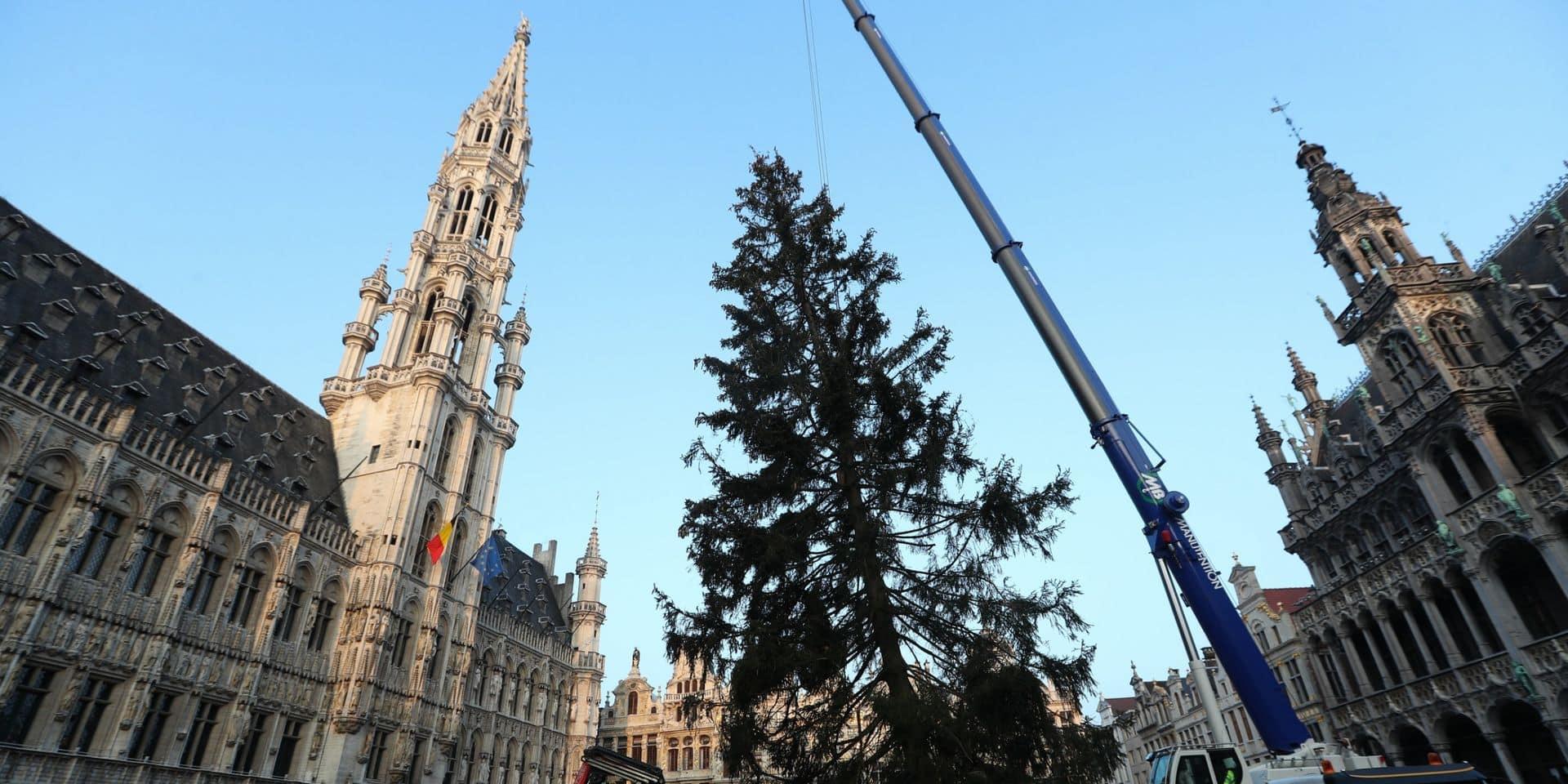 Le traditionnel sapin de Noël ornera la Grand-Place de Bruxelles dès jeudi