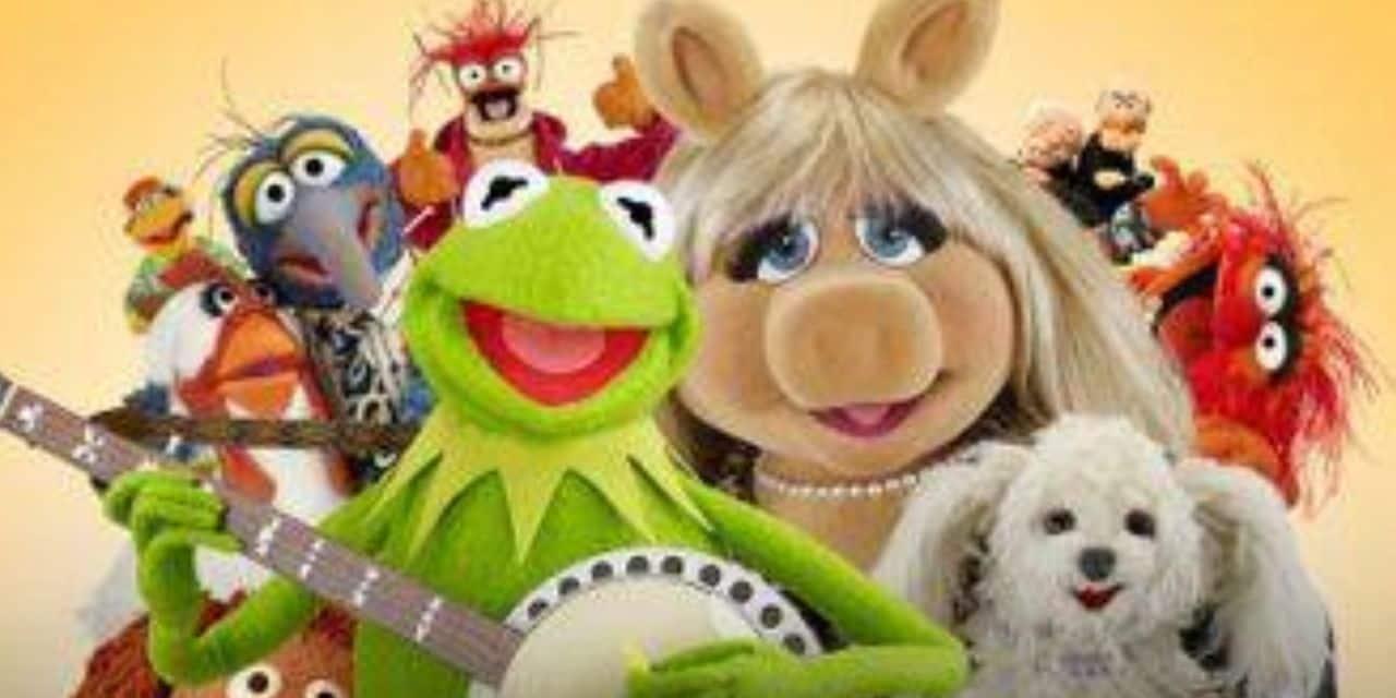 La mise en garde avant le Muppet Show sur Disney+ fait polémique - dh.be