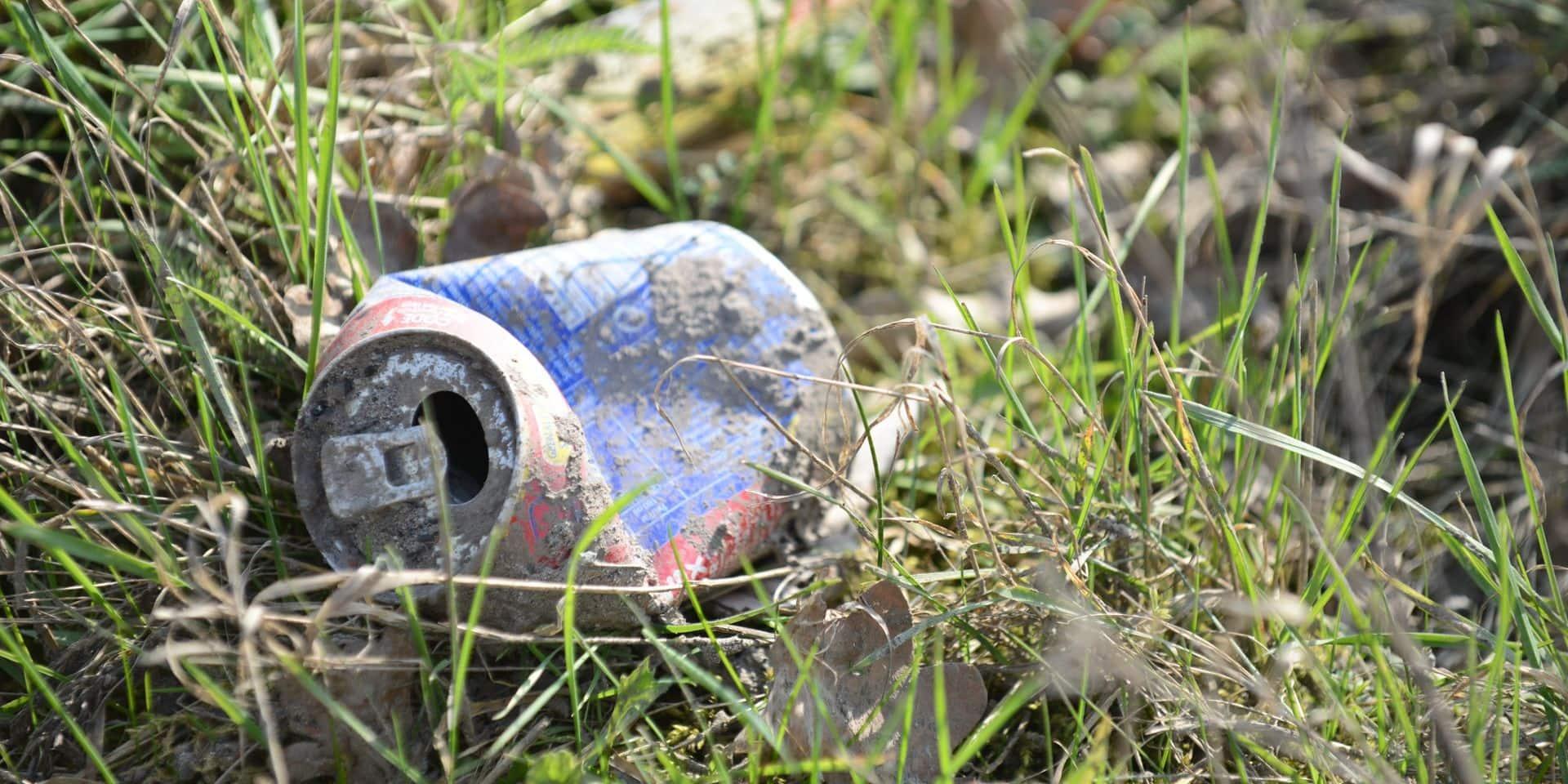 """Les déchets situés aux abords du ruisseau """"La Grande Honnelles"""" ont été ramassés"""
