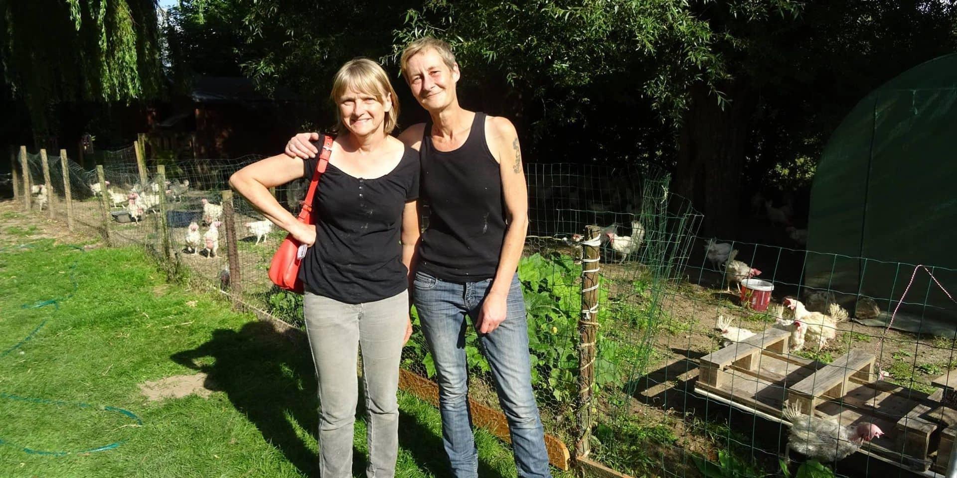 Solange t'Kint, la sauveuse de poules : elle a déjà évité l'abattoir à 200.000 volatiles !