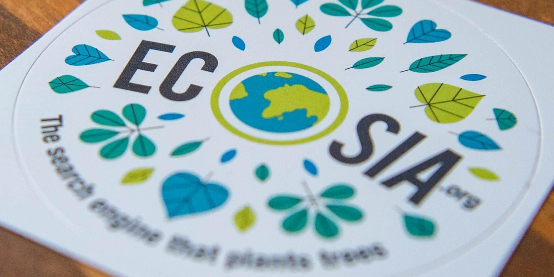 Tournai: la Ville plante des arbres grâce à ses recherches sur internet