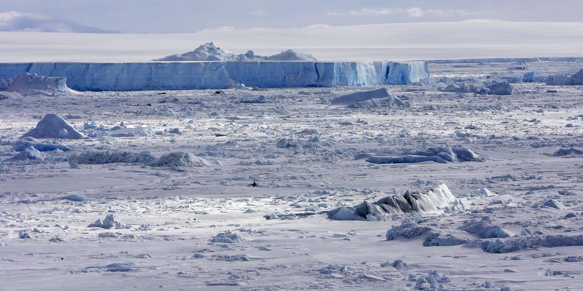 L'étrange découverte de chercheurs en Antarctique