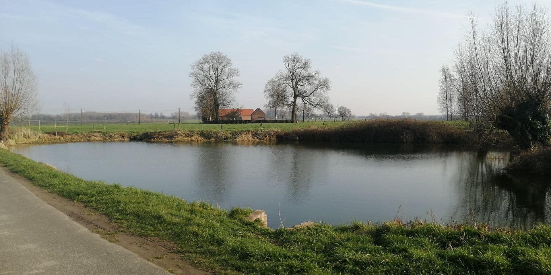 Willaupuis : la commune vend… un étang