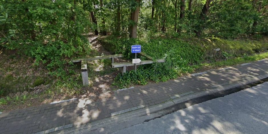 Un octogénaire retrouvé mort dans une réserve naturelle du Brabant flamand : il a été attaqué par son propre chien !