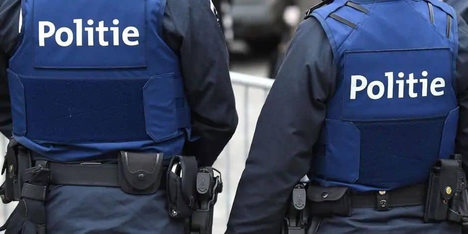 Il s'en prend aux policiers après une bagarre à Dinant