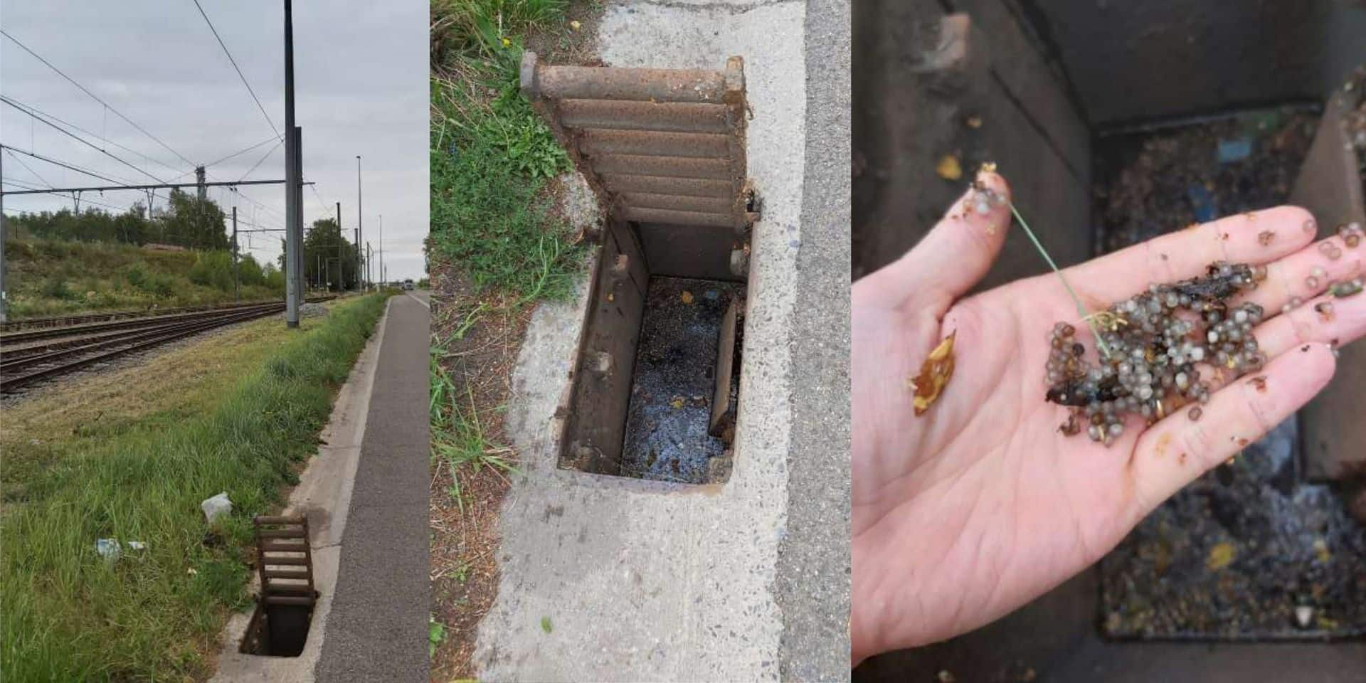 Pollution de micro-billes à Ecaussinnes: le problème toujours pas résolu !