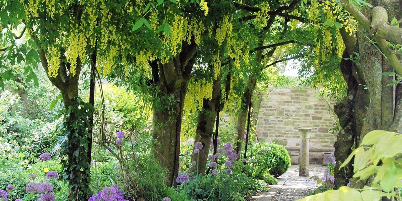 Agir au jardin : et si l'été était aussi sec que le printemps ?