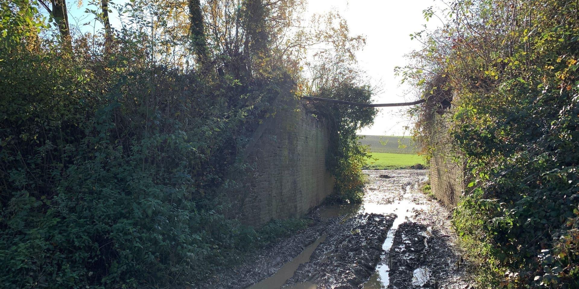 Pont du Fourçon démoli à Braine-l'Alleud : le tribunal ordonne la suspension des travaux