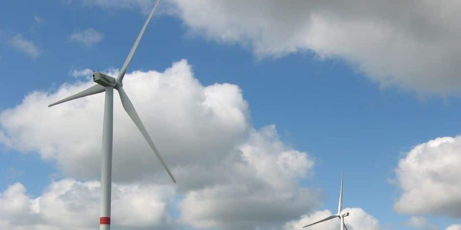 Vielsalm-Saint-Vith : un parc de 7 éoliennes de 200 m de haut en zone forestière ?
