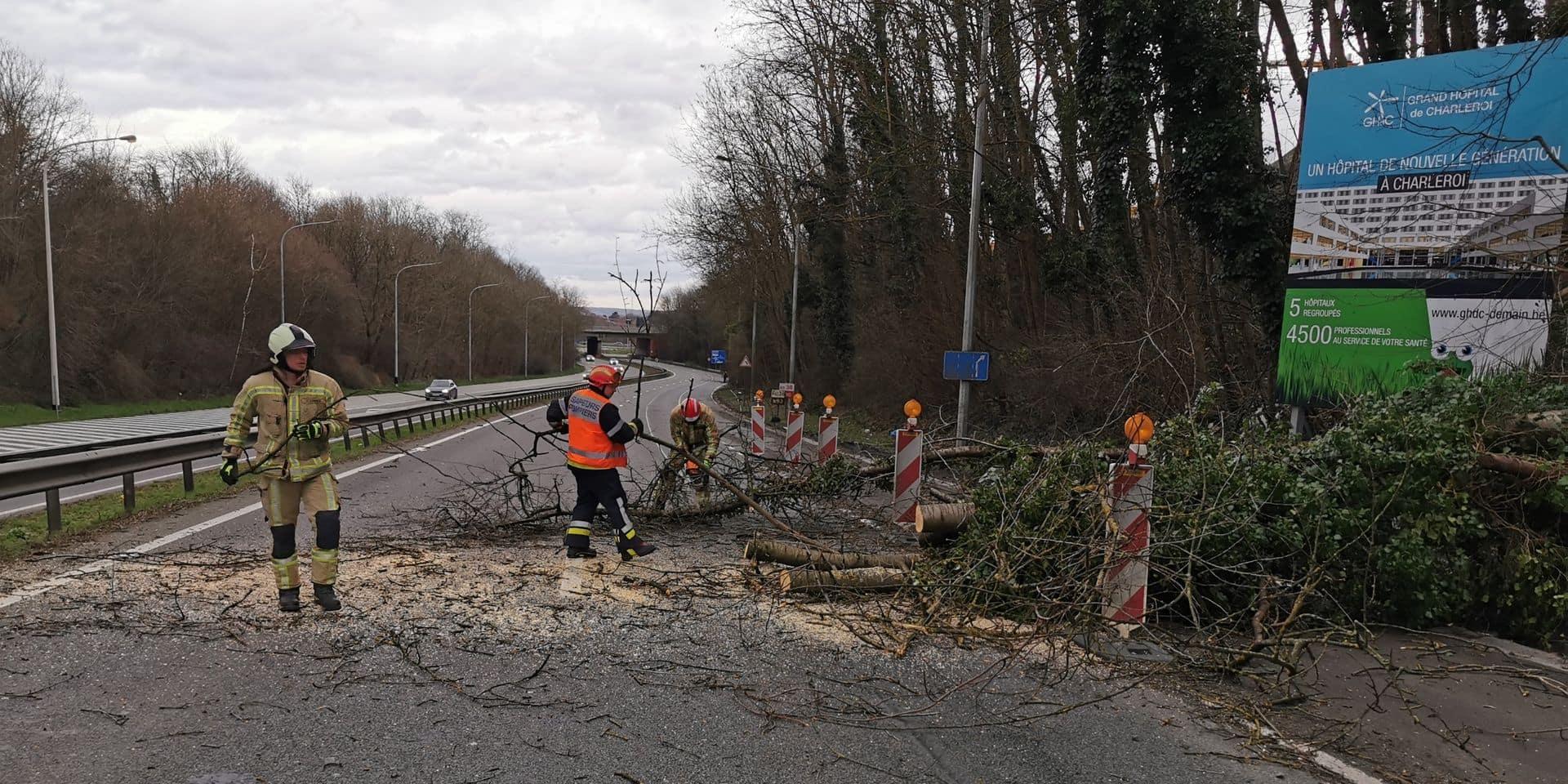 Tempête Dennis: 150 interventions pour la zone de Secours Hainaut-Est jusqu'à maintenant