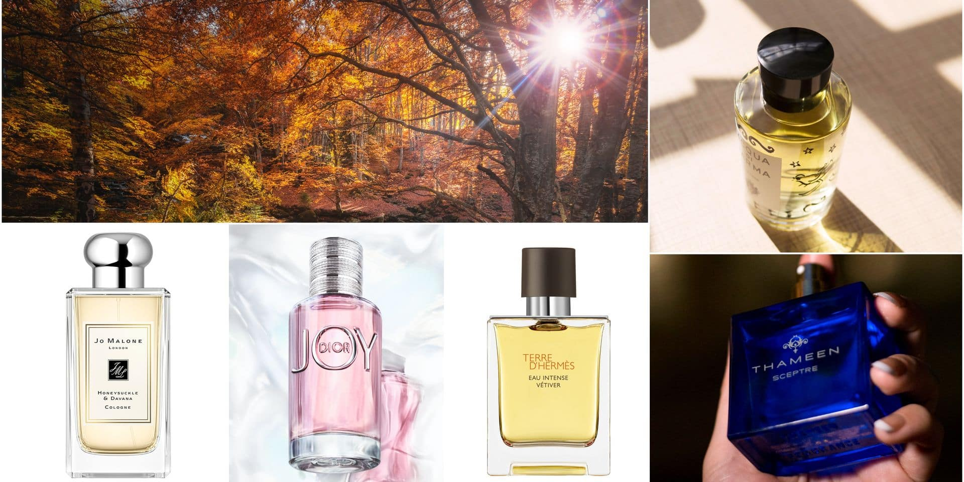 5 parfums qui vont enchanter l'air automnal