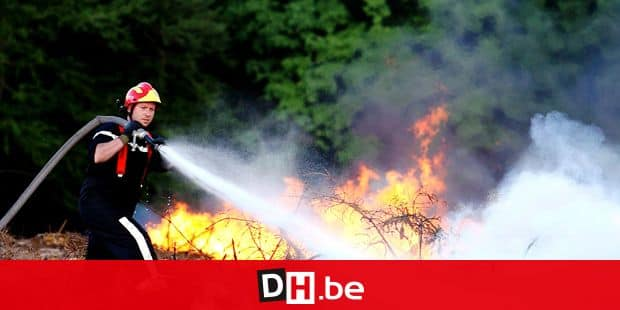 20070501 - THEUX, BELGIUM : Forest fire at the ' Bois de la Reid ' in Theux, Tuesday 01 May 2007. BELGA PHOTO MICHEL KRAKOWSKI *** Local Caption ***