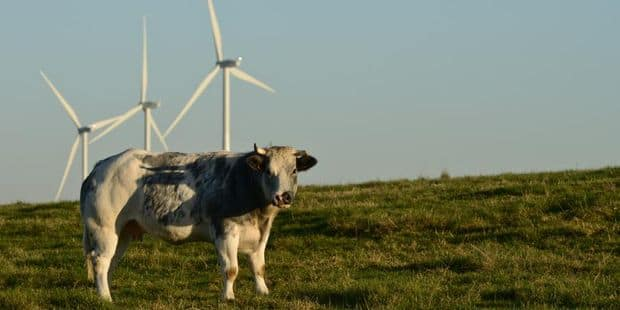 Sivry-Rance: un financement participatif pour la construction du parc éolien