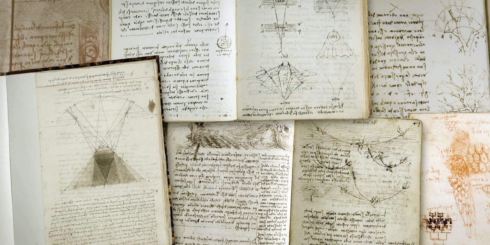 Léonard De Vinci peignait aussi avec ses doigts