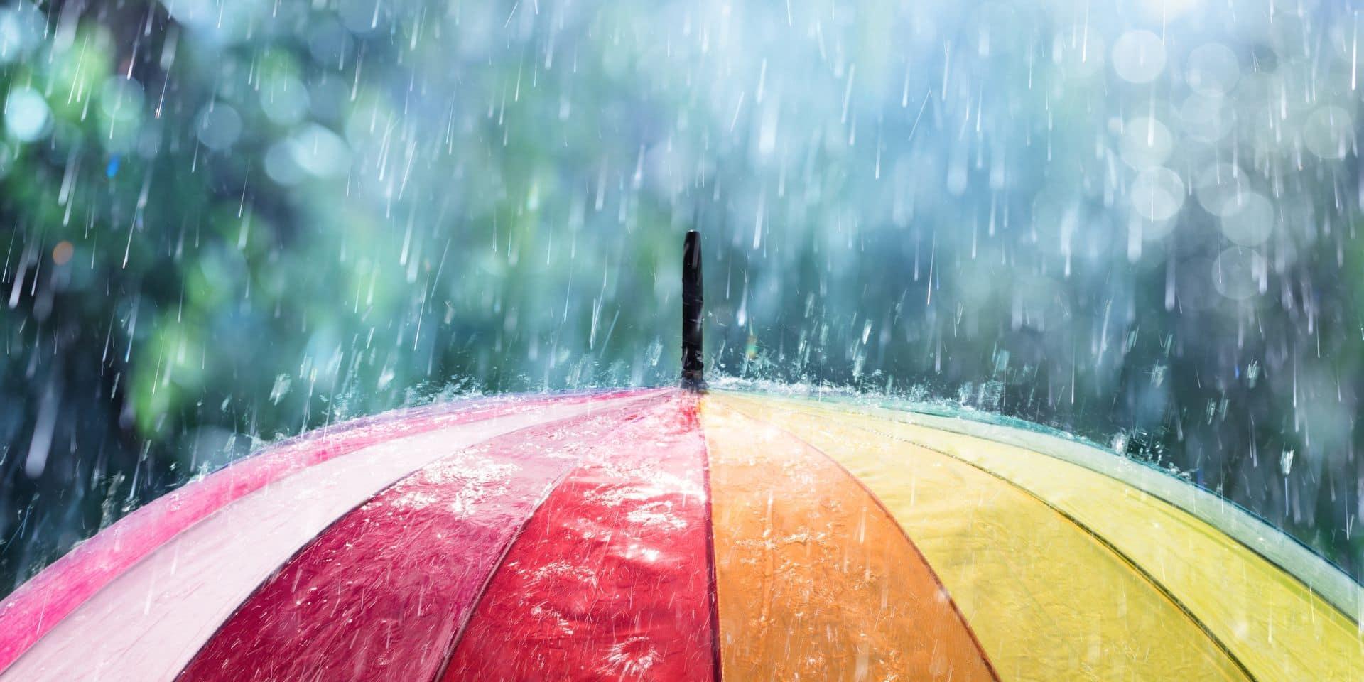 Météo: des précipitations hivernales et de la pluie pour clôturer l'année 2020