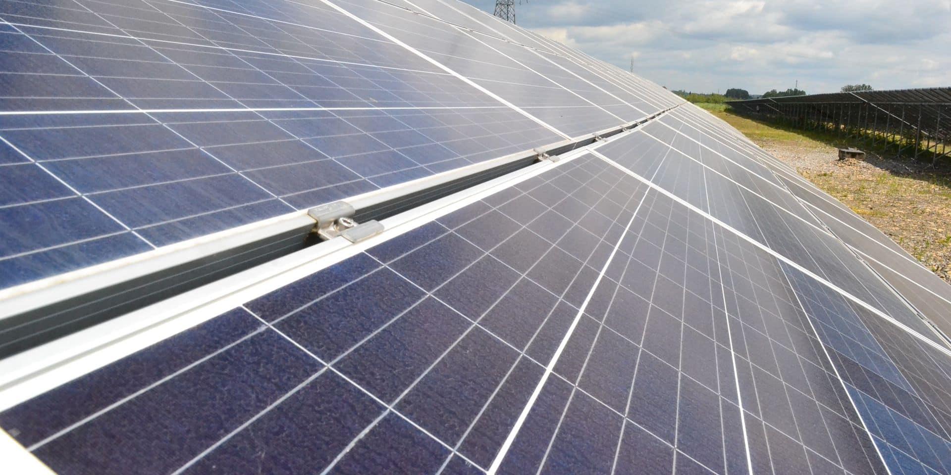 Comment gagner de l'argent avec des panneaux photovoltaïques ?