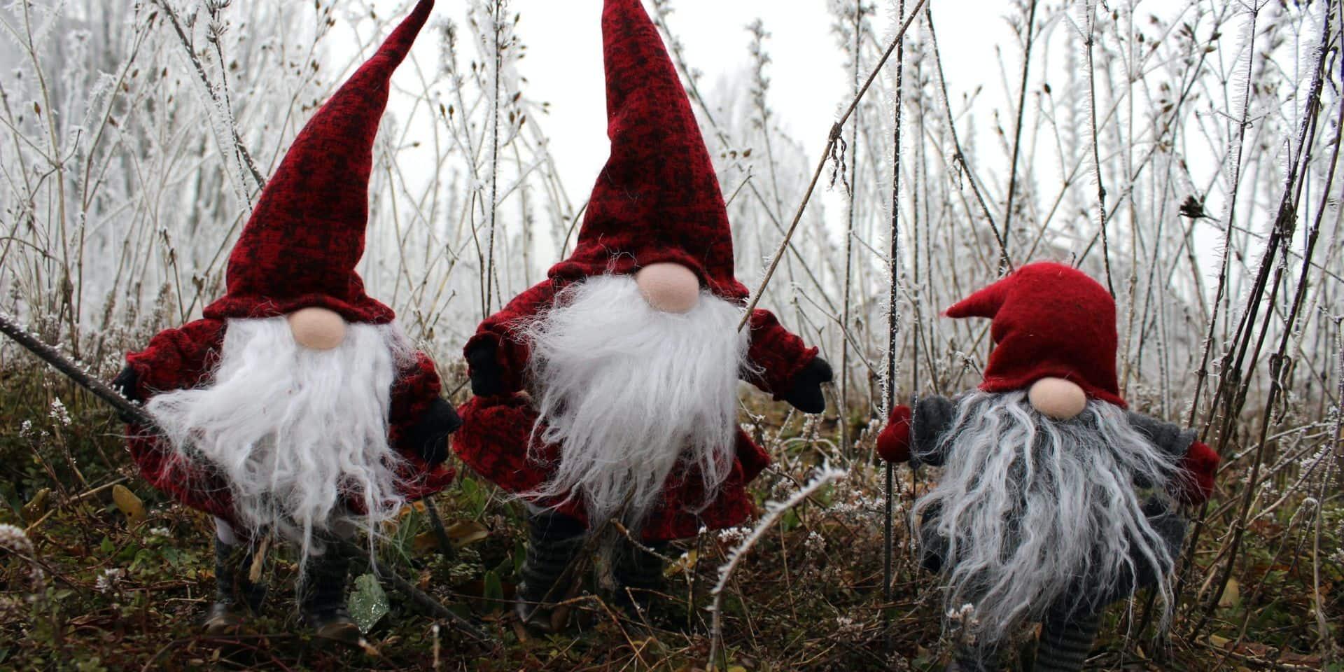 Chièvres: des contes de Noël à la maison
