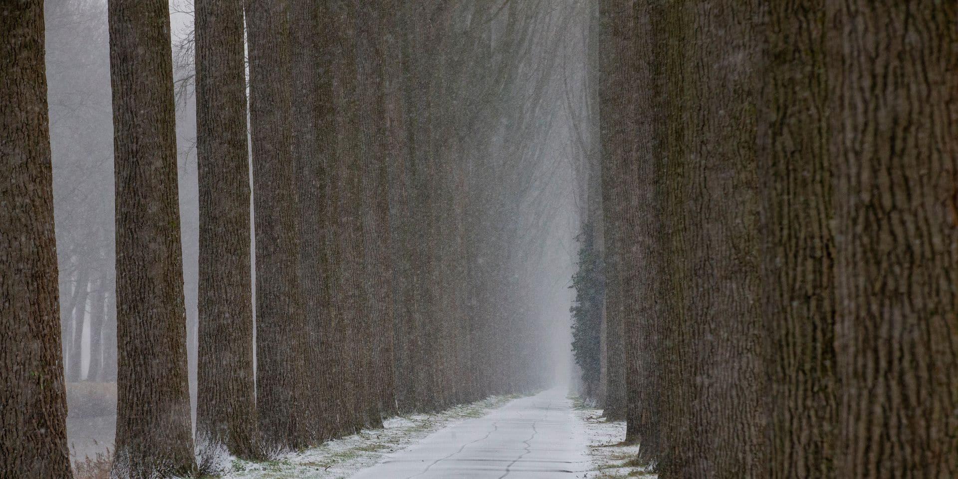 Météo: des chutes de neige avant les éclaircies